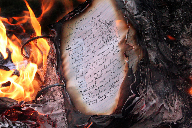 """""""The Temperature at Which Books Burn"""" © .sarahwynne.; Creative Commons license"""