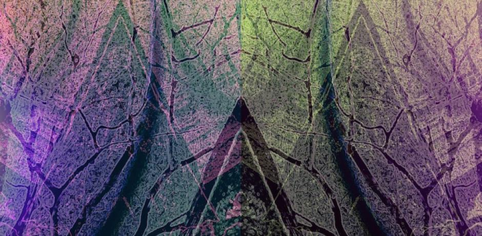 """""""Tree Tribe"""" (detail) © Abbe Mogell; used by permission"""